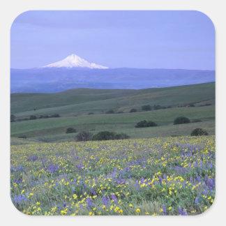 WA el condado de Klickitat rancho de la montaña Calcomania Cuadradas