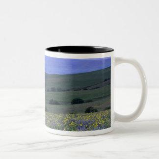 WA el condado de Klickitat rancho de la montaña Tazas De Café