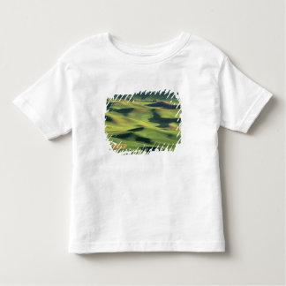 WA, el condado de Whitman, tierras de labrantío de T-shirts