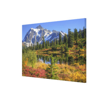WA, Heather Meadows Recreation Area, Mt. 2 Stretched Canvas Print