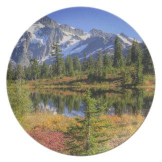 WA, Heather Meadows Recreation Area, Mt. 2 Plate