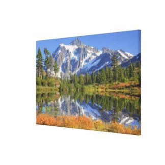 WA, Heather Meadows Recreation Area, Mt. Canvas Print