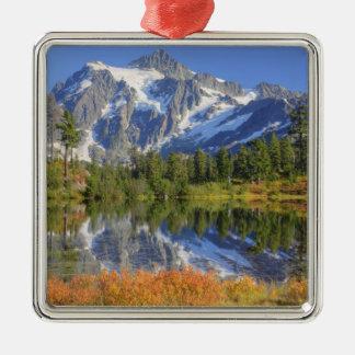WA, Heather Meadows Recreation Area, Mt. Metal Ornament