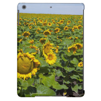 WA, Kittitas County, Sunflower Field iPad Air Cases