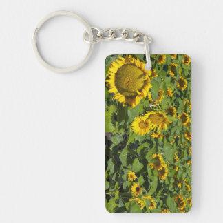 WA, Kittitas County, Sunflower Field Keychain