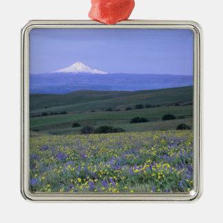 WA, Klickitat County, Dalles Mountain Ranch, Metal Ornament