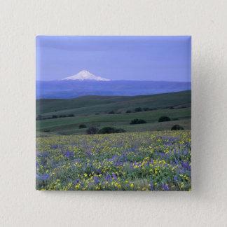 WA, Klickitat County, Dalles Mountain Ranch, Pinback Button