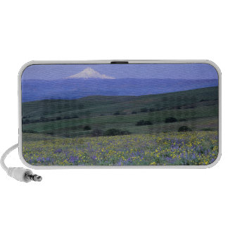 WA, Klickitat County, Dalles Mountain Ranch, iPod Speaker