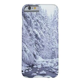 WA, Mount Baker-Snoqualmie National Forest, Barely There iPhone 6 Case