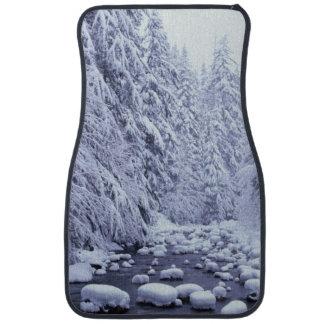WA, Mount Baker-Snoqualmie National Forest, Car Mat