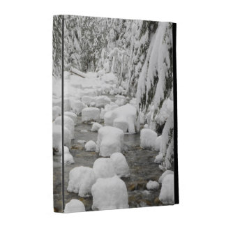 WA, Mount Baker Snoqualmie National Forest, iPad Cases