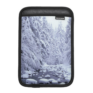 WA, Mount Baker-Snoqualmie National Forest, iPad Mini Sleeve