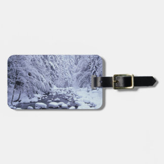 WA, Mount Baker-Snoqualmie National Forest, Luggage Tags