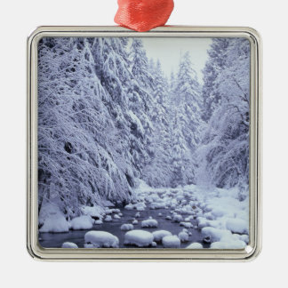 WA, Mount Baker-Snoqualmie National Forest, Metal Ornament