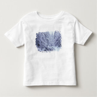 WA, Mount Baker-Snoqualmie National Forest, T Shirt