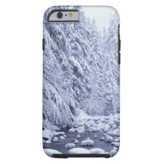 WA, Mount Baker-Snoqualmie National Forest, Tough iPhone 6 Case