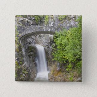WA, Mount Rainier National Park, Christine Falls Button