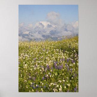 WA, Mt. Baker Wilderness, Mt. Shuksan and Poster