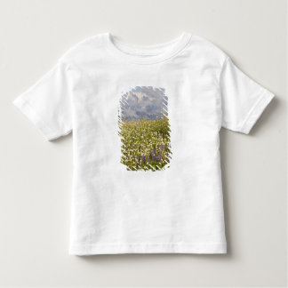 WA, Mt. Baker Wilderness, Mt. Shuksan and Toddler T-shirt