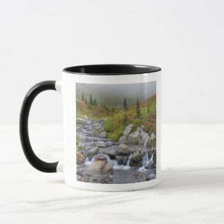 WA, Mt. Rainier National Park, Edith Creek Mug