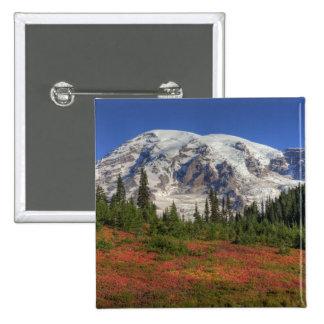 WA, Mt. Rainier National Park, Paradise Valley Pinback Buttons