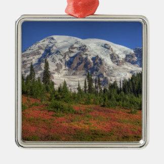 WA, Mt. Rainier National Park, Paradise Valley Square Metal Christmas Ornament