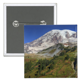 WA, Mt. Rainier National Park, view from the Button