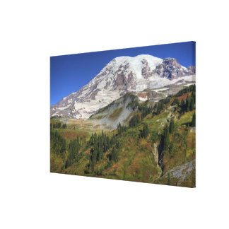 WA, Mt. Rainier National Park, view from the Canvas Print