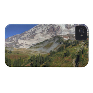 WA, Mt. Rainier National Park, view from the iPhone 4 Cover