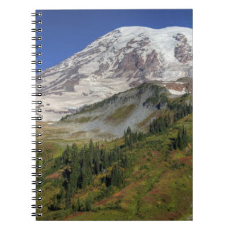 WA, Mt. Rainier National Park, view from the Notebook