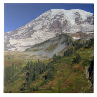 WA, Mt. Rainier National Park, view from the Tile