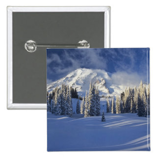 WA, Mt. Rainier NP, Mt. Rainier and Paradise Pin