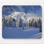 WA, Mt. Rainier NP, Mt. Rainier and Paradise Mouse Pads