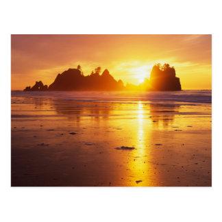 WA NP olímpico playa de Shi Shi en la puesta del Postales