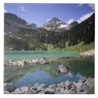 WA, Okanogan N-F, lago lewis y pico negro Azulejo Cuadrado Grande