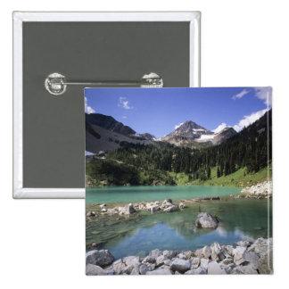 WA, Okanogan N-F, lago lewis y pico negro Pin Cuadrado
