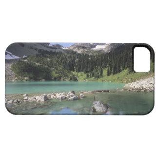 WA, Okanogan NF, Lewis Lake and Black Peak iPhone 5 Cases