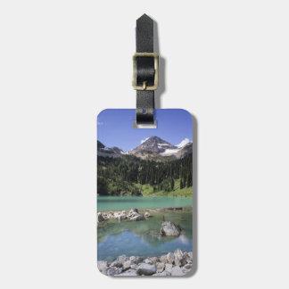 WA, Okanogan NF, Lewis Lake and Black Peak Tags For Luggage