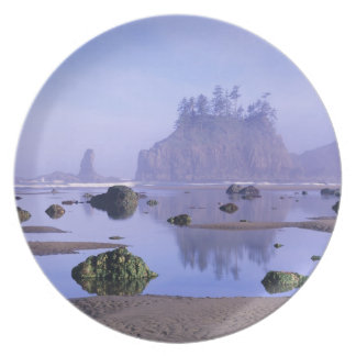 WA, Olympic National Park, Second Beach, Melamine Plate