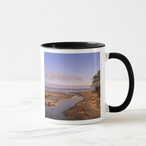 WA, Olympic NP, Kalaloch Beach and Kalaloch Mug