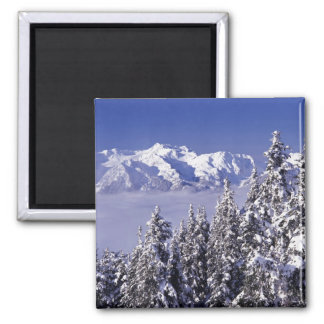 WA, Olympic NP, Olympic Mountain Range, view 2 Inch Square Magnet
