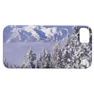 WA, Olympic NP, Olympic Mountain Range, view iPhone 5 Case