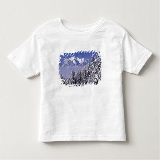 WA, Olympic NP, Olympic Mountain Range, view Toddler T-shirt
