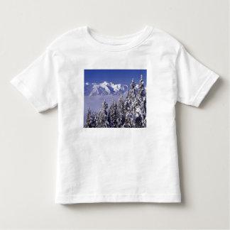 WA, Olympic NP, Olympic Mountain Range, view Tshirt