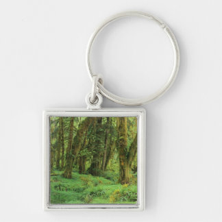 WA, Olympic NP, Quinault Rain Forest, moss Keychain