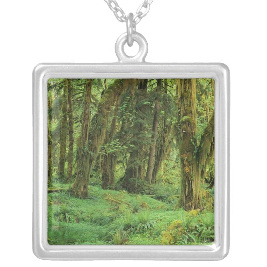 WA, Olympic NP, Quinault Rain Forest, moss Silver Plated Necklace