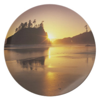 WA, Olympic NP, Second Beach at sunset Plate