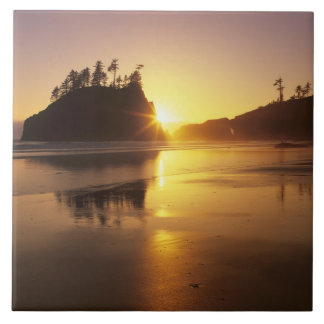 WA, Olympic NP, Second Beach at sunset Tile