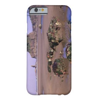 WA, Olympic NP, Second Beach with tidepools and Barely There iPhone 6 Case