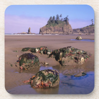 WA, Olympic NP, Second Beach with tidepools and Coasters